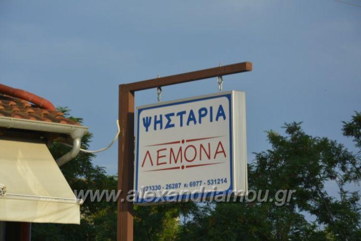alexandriamou.gr_lemona001