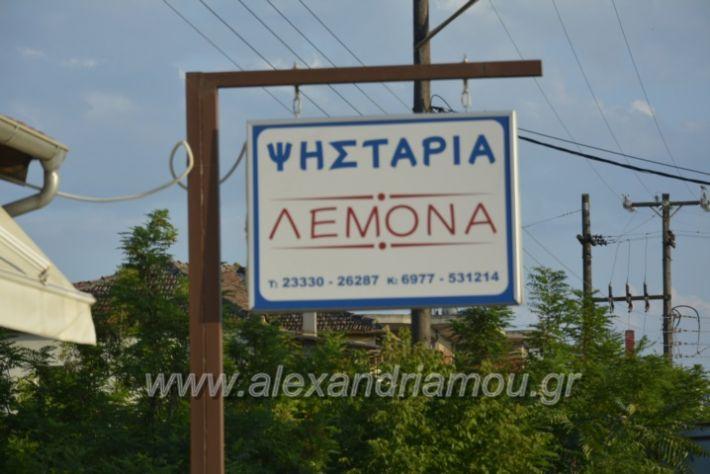 alexandriamou.gr_lemona005