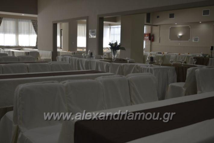 alexandriamou.gr_lemona023