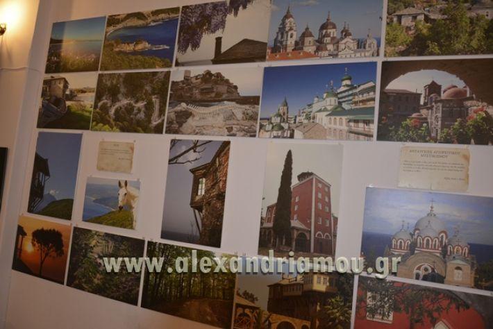 alexandriamou_LILIOS_AGIO_OROS003