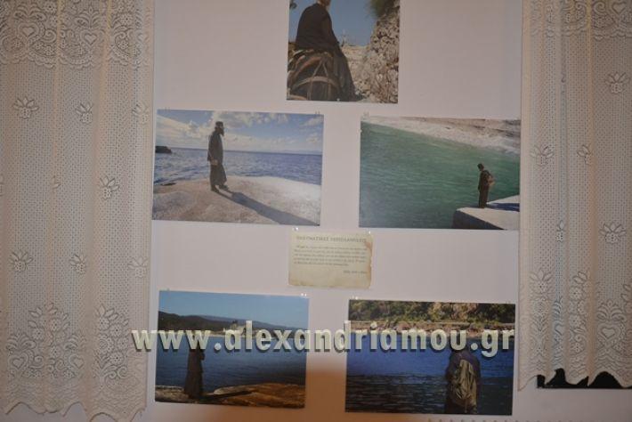 alexandriamou_LILIOS_AGIO_OROS004