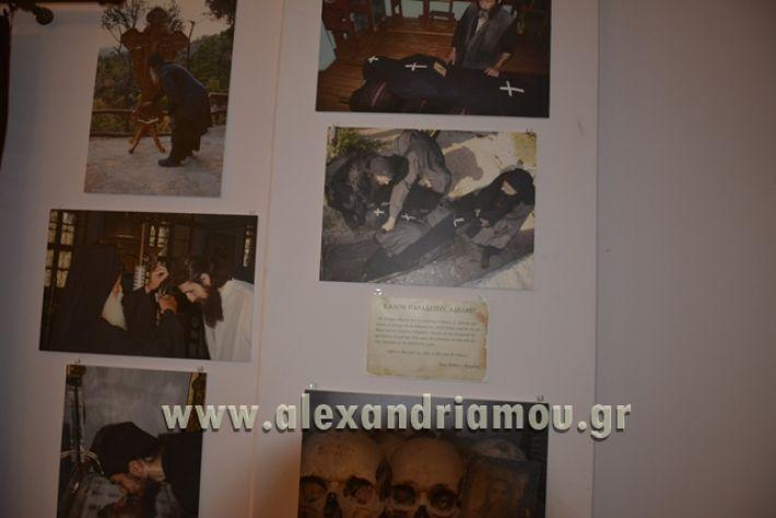 alexandriamou_LILIOS_AGIO_OROS010