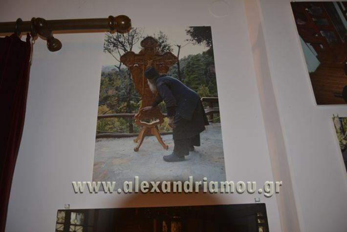 alexandriamou_LILIOS_AGIO_OROS012