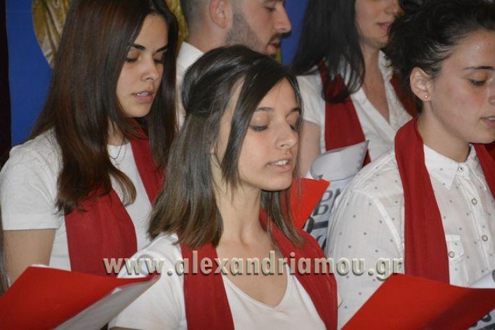 alexandriamou_LILIOS_AGIO_OROS036