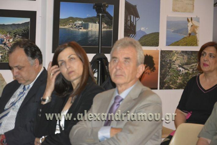 alexandriamou_LILIOS_AGIO_OROS044