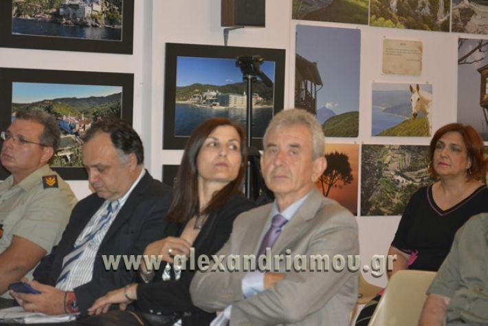 alexandriamou_LILIOS_AGIO_OROS045