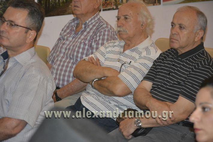alexandriamou_LILIOS_AGIO_OROS061