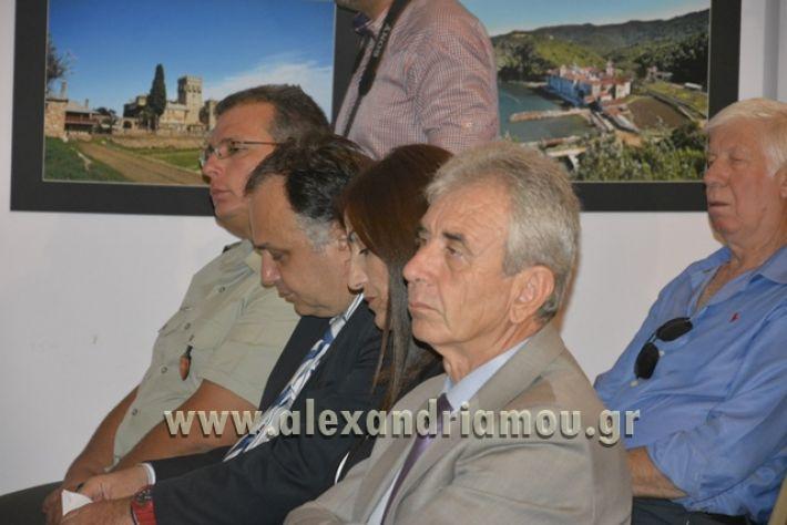 alexandriamou_LILIOS_AGIO_OROS069