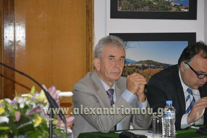 alexandriamou_LILIOS_AGIO_OROS082