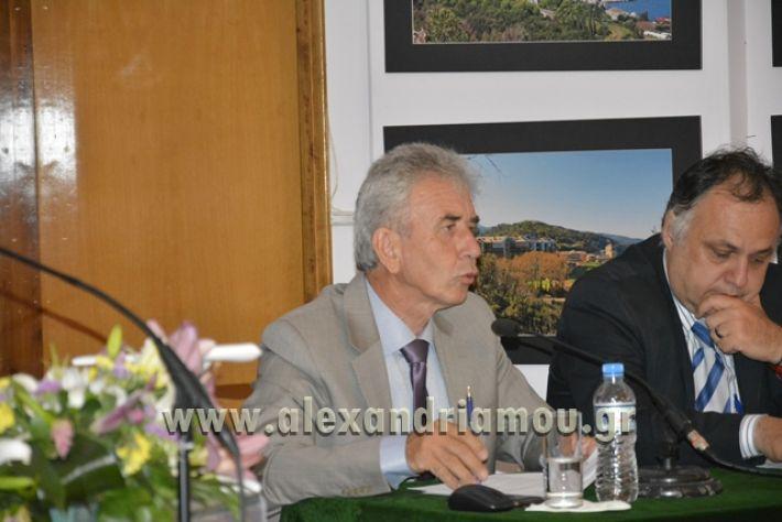 alexandriamou_LILIOS_AGIO_OROS090