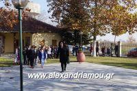 alexandriamou_lonap_1odhm_sxoelio0005