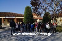 alexandriamou_lonap_1odhm_sxoelio0008