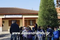 alexandriamou_lonap_1odhm_sxoelio0010