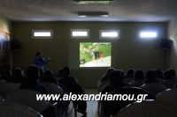 alexandriamou_lonap_1odhm_sxoelio0062