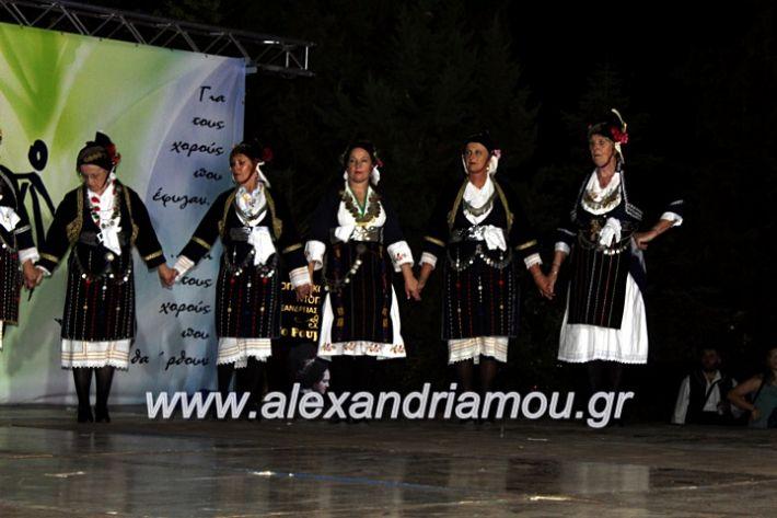 alexandriamou.gr_agiosalexandros20191IMG_4342
