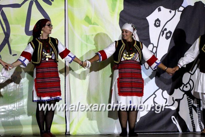 alexandriamou.gr_agiosalexandros20191IMG_4435