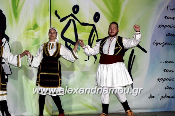 alexandriamou.gr_agiosalexandros20191IMG_4447