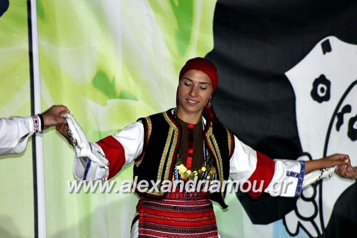 alexandriamou.gr_agiosalexandros20191IMG_4449