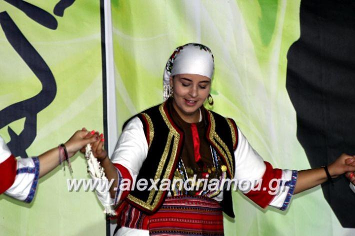 alexandriamou.gr_agiosalexandros20191IMG_4452