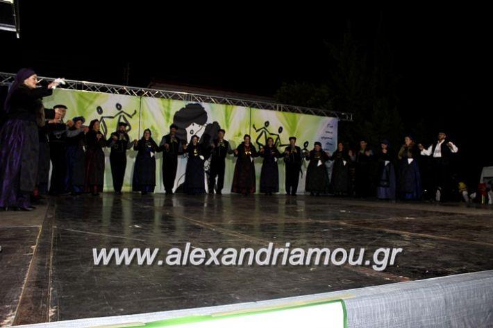 alexandriamou.gr_agiosalexandros20191IMG_4511