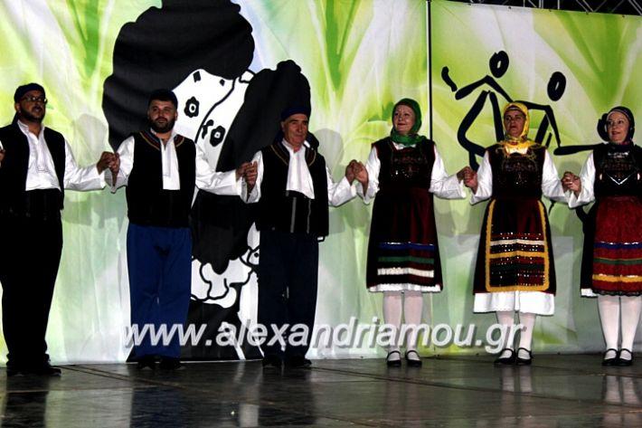 alexandriamou.gr_agiosalexandros20191IMG_4541