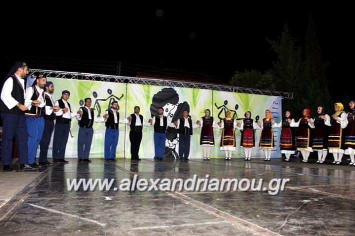 alexandriamou.gr_agiosalexandros20191IMG_4543