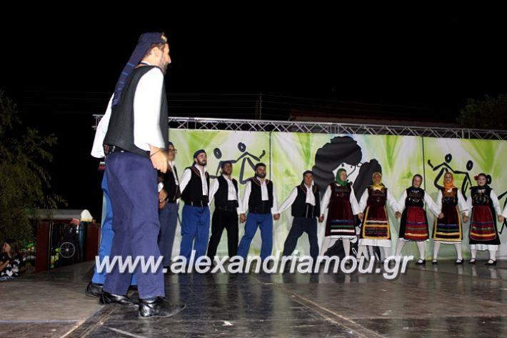alexandriamou.gr_agiosalexandros20191IMG_4544