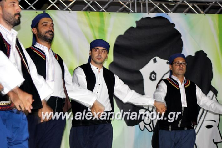 alexandriamou.gr_agiosalexandros20191IMG_4547