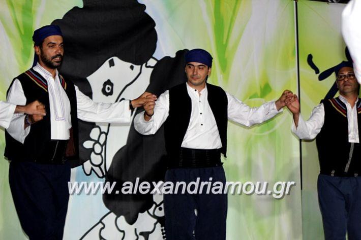alexandriamou.gr_agiosalexandros20191IMG_4548