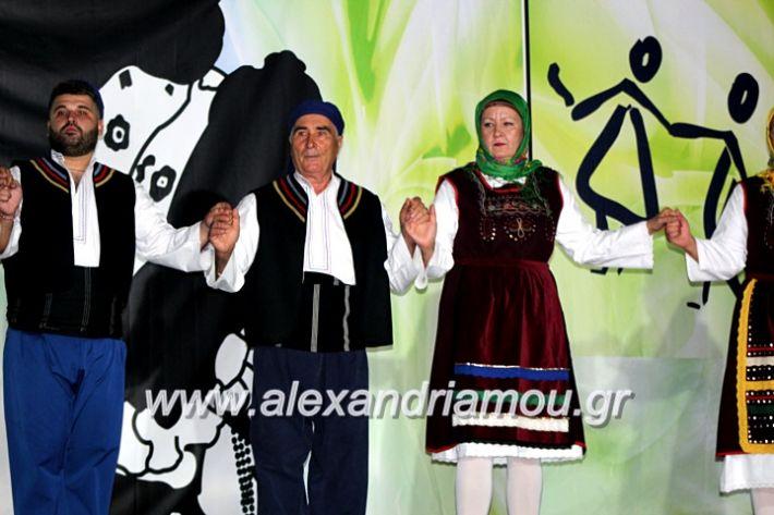 alexandriamou.gr_agiosalexandros20191IMG_4553