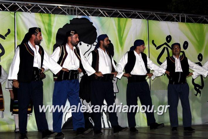 alexandriamou.gr_agiosalexandros20191IMG_4567