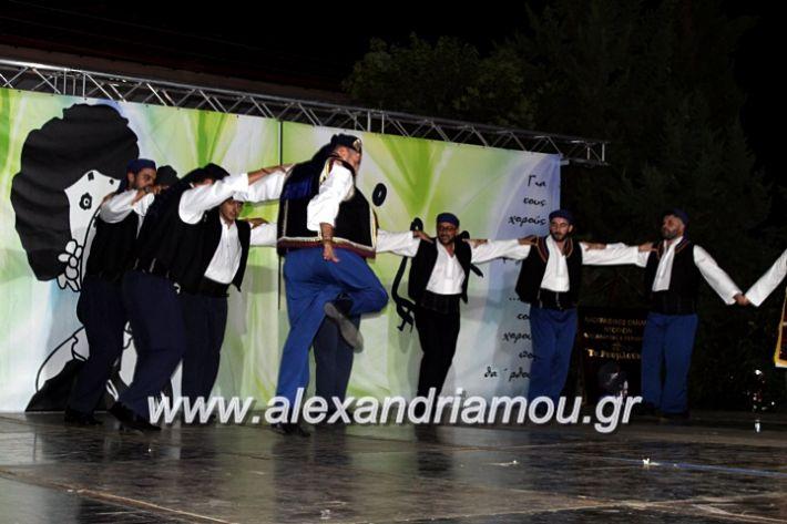 alexandriamou.gr_agiosalexandros20191IMG_4574