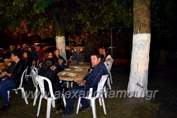 alexandriamou.gr_lonaptzikas2019DSC_0142