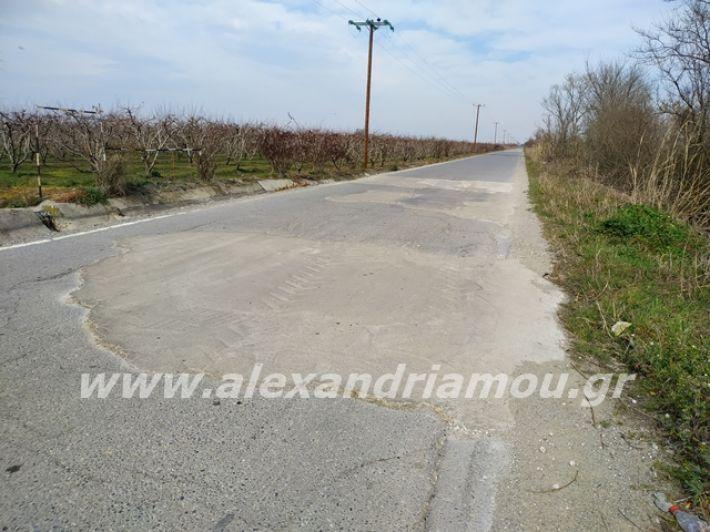 alexandriamou.gr_dromo1loutros12
