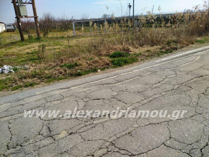 alexandriamou.gr_dromo1loutros15