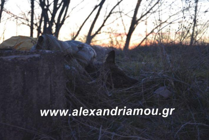 alexandriamou.likosplatei001