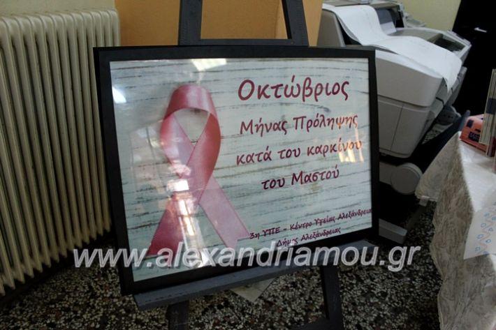 alexandriamou.gr_karkinosmastpu2019IMG_2146
