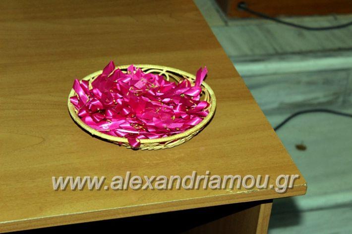 alexandriamou.gr_karkinosmastpu2019IMG_2151