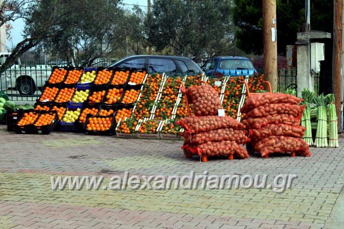 alexandriamou.gr_mandrasfroutaIMG_1497
