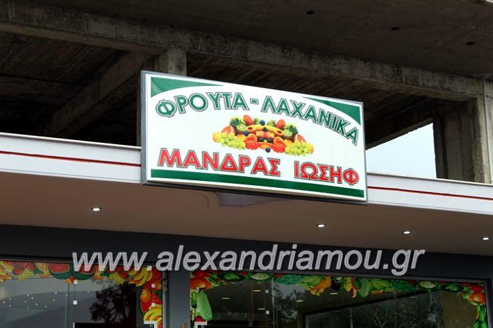 alexandriamou.gr_mandrasfroutaIMG_1499