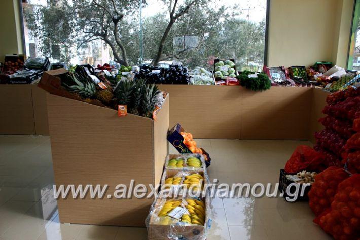 alexandriamou.gr_mandrasfroutaIMG_1559