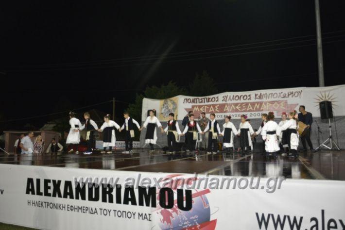alexandriamou.gr_kampoxori2018082