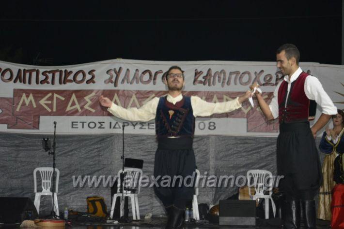 alexandriamou.gr_kampoxori2018128