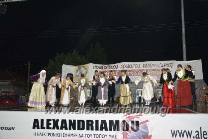 alexandriamou.gr_kampoxori2018182