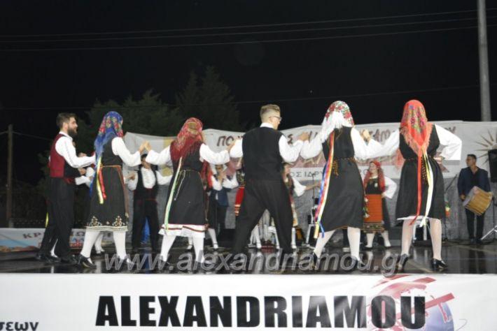 alexandriamou.gr_kampoxori2018187