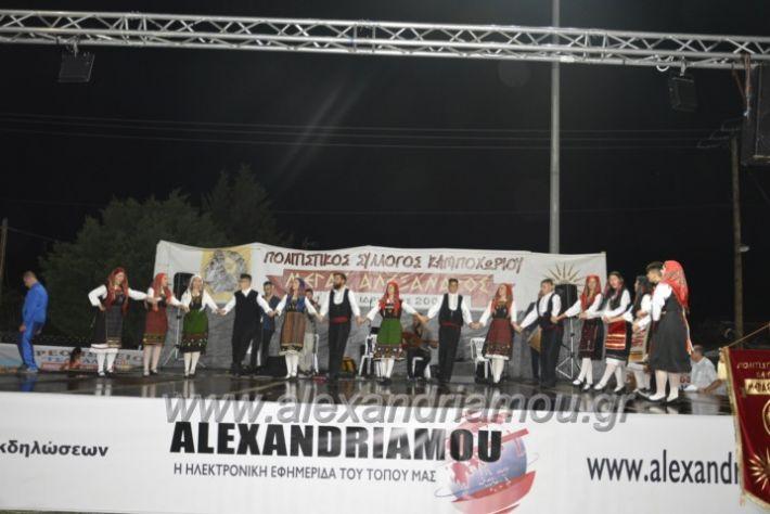 alexandriamou.gr_kampoxori2018205