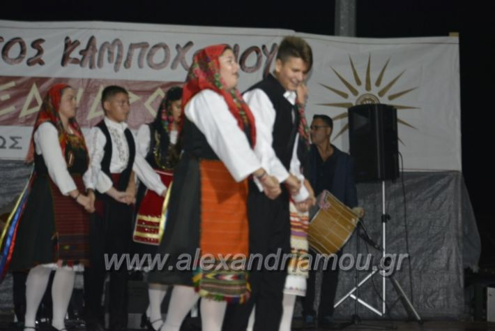 alexandriamou.gr_kampoxori2018206