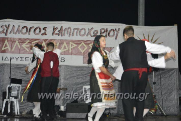 alexandriamou.gr_kampoxori2018213