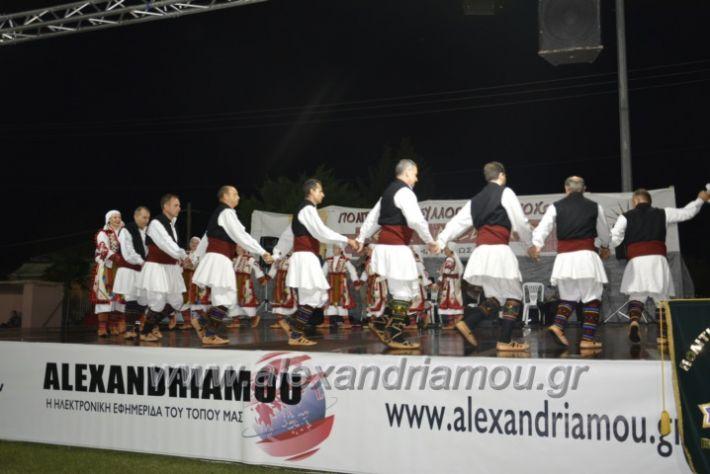 alexandriamou.gr_kampoxori2018223