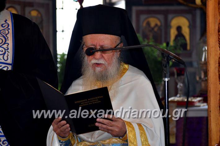 alexandriamou.gr_parelasiMELIKI28.1019DSC_0084